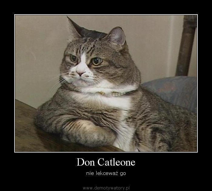 don-catleone.jpg