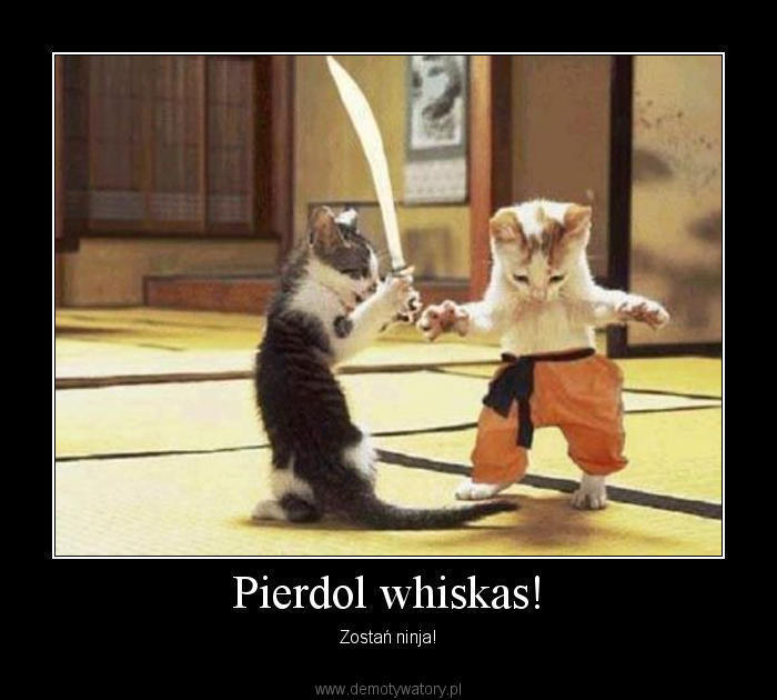 pierdol-whiskas.jpg